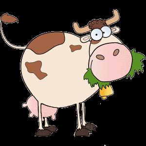 Картинка корова жует траву